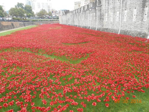 Ceramic poppies representing lives lost