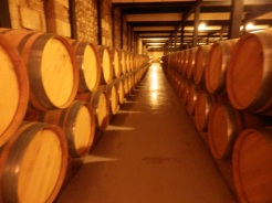 Marques de Cáceres wine barrels